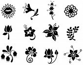 Fantasy Flower Icon Silhouettecollection Set 2(vector)