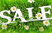 stock photo of flower shop  - Grass with flowers and white text Sale on it  - JPG