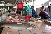 KOTA KINABALU, MALAYSIA - MAY 12 2014: Sharks at fish market. Environmental problem of trade in enda