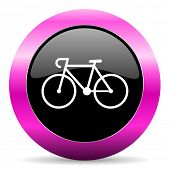 bicycle pink glossy icon