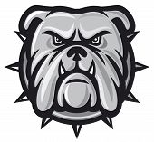 picture of mongrel dog  - Bulldog head vector - JPG