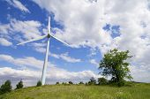 group of windmills for renewable electric energy production, Navarre province, Spain