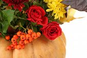 Beautiful autumn composition in pumpkin close up