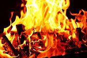 Bonfire closeup