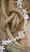 Rope And Shell