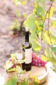 Tasty wine on wooden barrel on grape plantation background