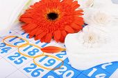 Sanitary pads and orange Gerber on blue calendar background