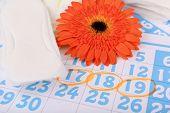 Sanitary pads, orange Gerber on blue calendar background