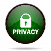 privacy green internet icon
