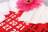 Sanitary pads, calendar, towel and pink Gerber on light background