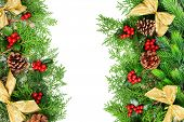 picture of mistletoe  - Beautiful Christmas border from fir and mistletoe on white background - JPG