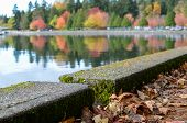 Autumn seawall