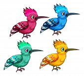 illustration of different color birds