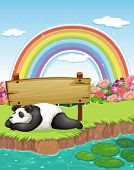 illustration of a panda sleeping by the river