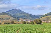 Alsace Landscape Near Village Orschwiller