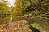 Plessey Woods And River Blyth