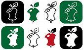 Nibbling Apple
