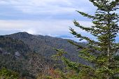 Appalachian Mountain Scene-02