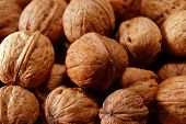 stock photo of vulva  - lots of walnuts - JPG