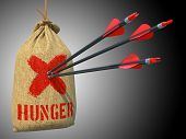 Hunger - Arrows Hit in Red Target.