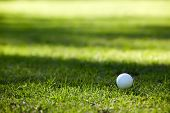 Golfball on yellow tee, soft shadows on background