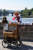 Prague Organ Grinder