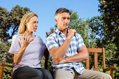 picture of argument  - Couple having an argument on park bench on a sunny day - JPG