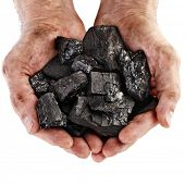 picture of combustion  - Hands of the miner black coal isolated on white background - JPG