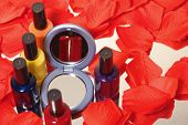 Nail Polish With Rose Peddle And Compact Mirror poster
