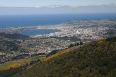Dunedin - Aerial View