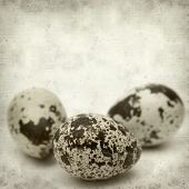 picture of quail  - textured old paper background with speckled quail eggs - JPG
