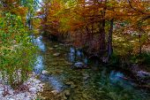 image of crystal clear  - Large Cypress Trees with Stunning Fall Color Lining a Crystal Clear Texas Hill Country Stream Near the Guadalupe River - JPG