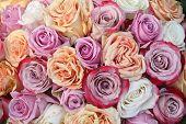 Purple And Orange Rose Arrangement