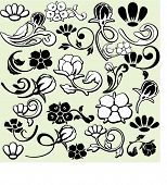 A set of 25 ornamental design elements in classic style. These are very precisely done elements, th
