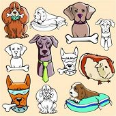 Vector illustrations of dogs and a guinea-pig in color, and black and white renderings.