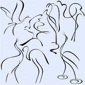 Eine Gruppe von 7 Vektor-Illustrationen von Vögeln exquisite und ornamentalen Stil.
