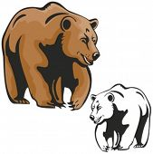 Vector illustration of a brown bear.