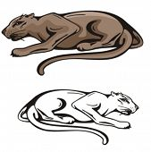 Vector illustration of a puma.