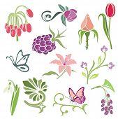 Floral ornamental design elements, vector series.
