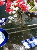 Still Life Of Garden Luncheon
