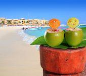 picture of playa del carmen  - playa del Carmen mexico Mayan Riviera beach coconut cocktail straw - JPG