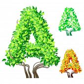 Vector illustration of an extra detailed tree alphabet symbols. Easy detachable crown. character a