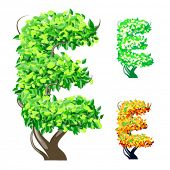 Vector illustration of an extra detailed tree alphabet symbols. Easy detachable crown. character e