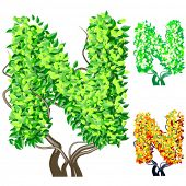 Vector illustration of an extra detailed tree alphabet symbols. Easy detachable crown. character n