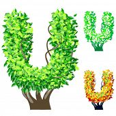 Vector illustration of an extra detailed tree alphabet symbols. Easy detachable crown. character u