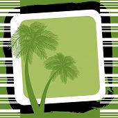 palmtrees in green
