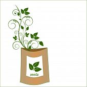 pacote de sementes com crescimento de plântulas ornamentada