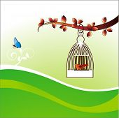 freedom concept bird cage butterfly