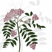 stock photo of heliotrope  - pretty flower bush and bird sitting on branch - JPG