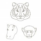 Wild Animal Outline Icons In Set Collection For Design. Mammal And Bird Vector Symbol Stock Web Illu poster